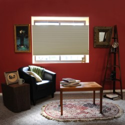 Standard Top Down Bottom Up Single Cell Blackout Shades