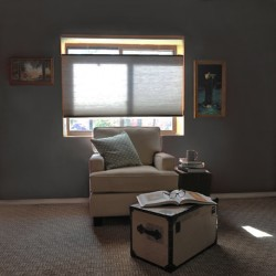 Smoothy Cord Loop Top Down Bottom Up Single Cell Light Filtering Shades