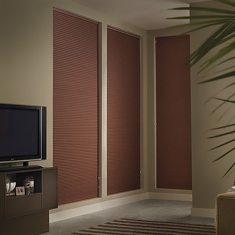 standard top down bottom up double cell blackout shades
